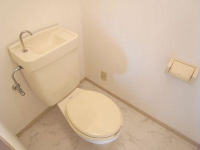 エクセル深沢201トイレ.JPG
